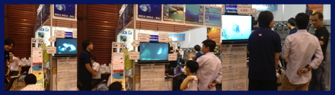tedex2013_report02